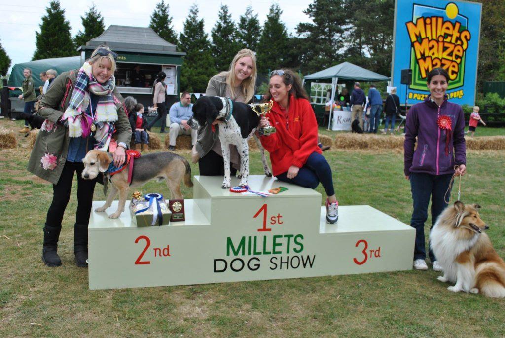 Millets dog show